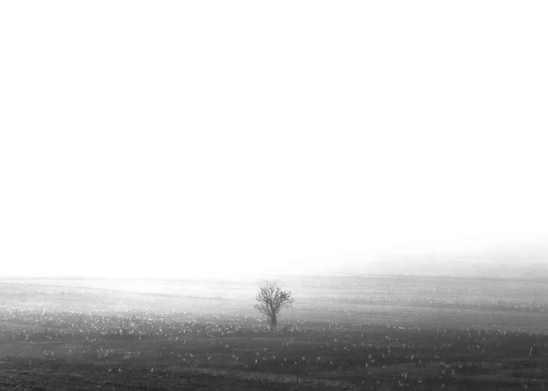Τάσος Κουτσιαύτης, Αλβανία, common routes, project, photography